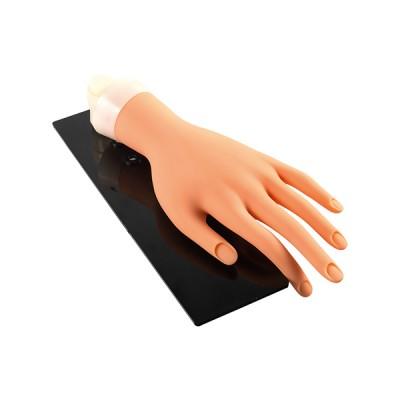 Εκπαιδευτικό Χέρι εξάσκησης με βάση