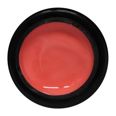 ALX Color Gel No 009