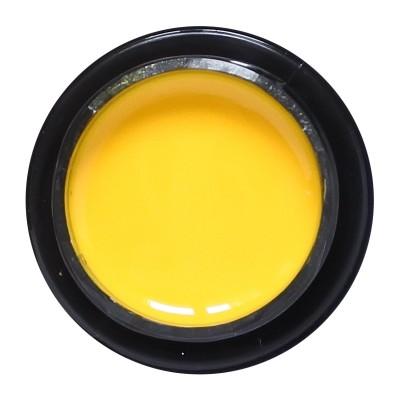 ALX Color Gel No 013