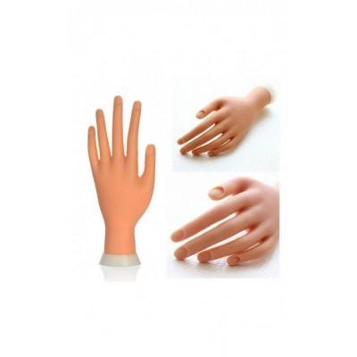 Εκπαιδευτικό Χέρι για μανικιούρ